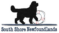 South Shore Newfoundlands